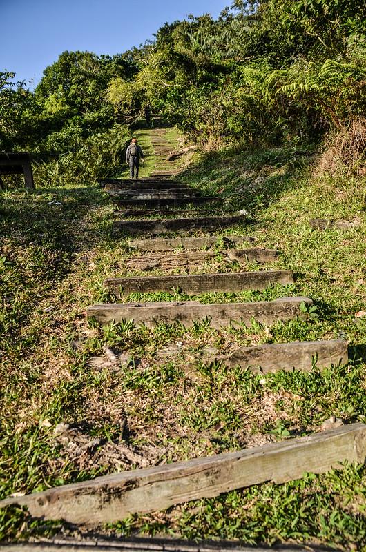 知本森林遊樂區榕蔭步道 (4)