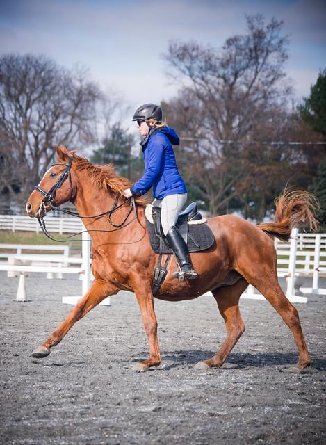 20181116 Austen's Ponies_21