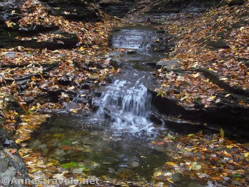 One of the uppermost falls in Barnes Gully, Onanda Park, Canandaigua, New York