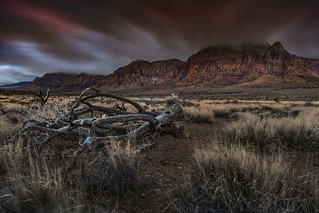 Red Rock Gloom Web | by amairphoto