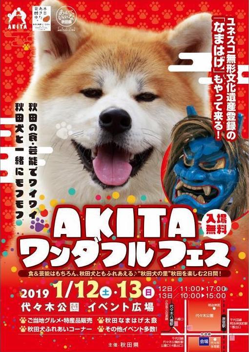 Akita Wonderful Festival