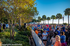 St Pete Run Fest 5k