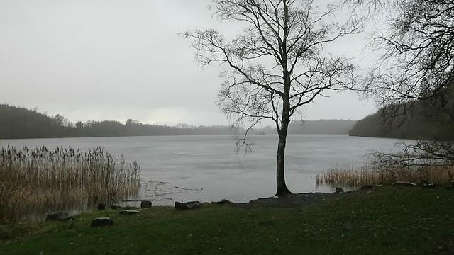 MVI_0995 Farnham Lough in the rain video