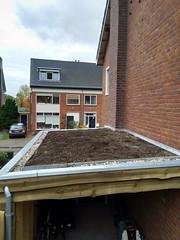 Het dak met substraat en mergel, 10 november 2018