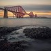 Forth Bridge, South Queensferry by MilesGrayPhotography (AnimalsBeforeHumans)