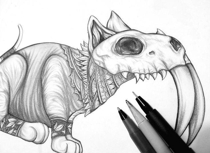 Cat Engine Drawing