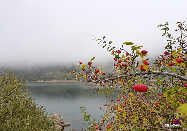 Ruta al Lago del Valle en Somiedo 14