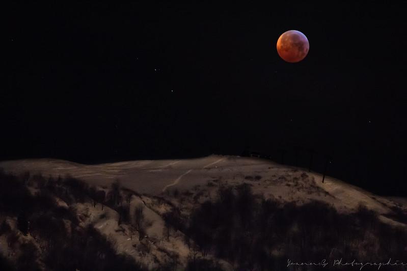 La lune sous toutes ses formes!! 46102944274_af3ffa6a88_c