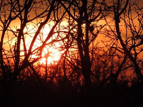 00778376 Sunset