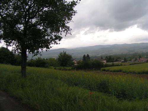 20080515 23205 0905 Jakobus Feld Wald Wiese Hügel Weite