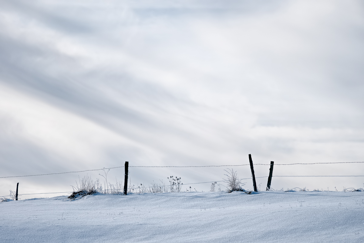 Un peu de neige 46852964341_9c8250ea0c_o
