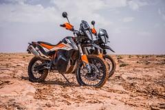 KTM 790 Adventure R 2019 - 27