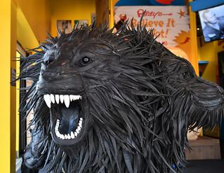 16-Jun-2018 OC Ripley's Two Headed Lion