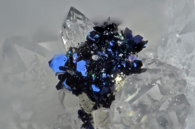 銅藍 / Covellite