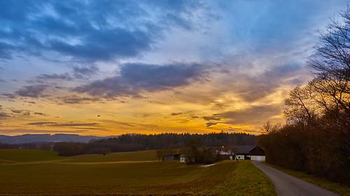 blauestunde fürstenfeld österreich austria steiermark hügelland sony gmaster 24mm landscape landschaft strase 169 cloudy bewölkt styria wald forest bluehour