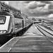 Intercity 125 Arriving at Penzance