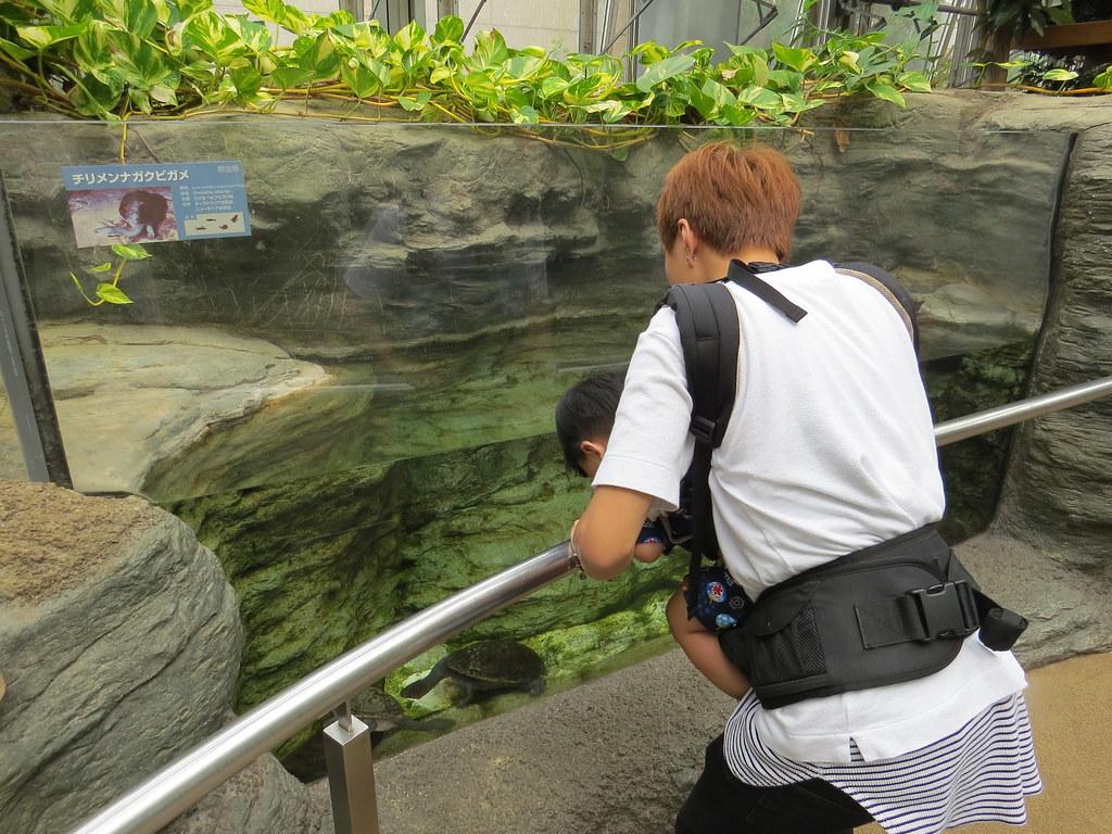 TOKYO ZOO上野動物園(兩光媽咪柳幼幼) (17)
