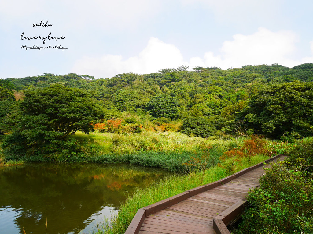 台北一日遊陽明山私房秘境推薦好玩好走親子景點大屯自然公園 (1)