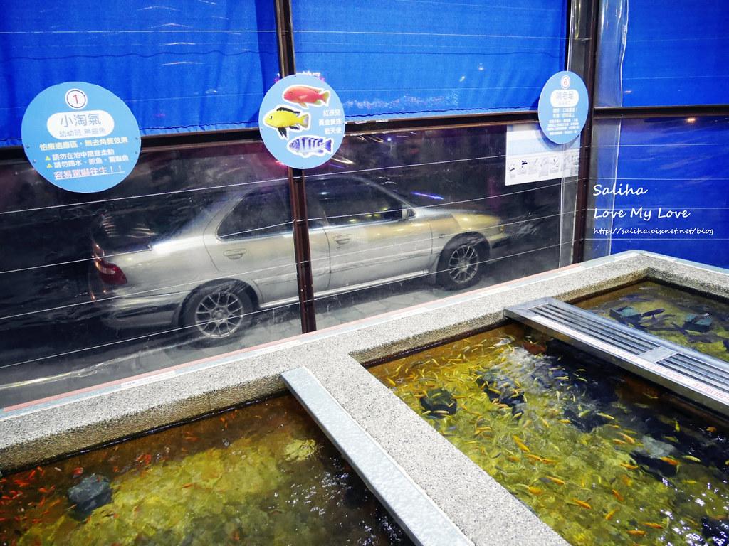 宜蘭礁溪一日遊景點推薦礁溪湯圍溝重口味溫泉魚去角質 (11)