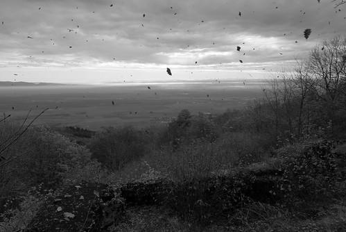 Tempête d'automne au Vieil Armand