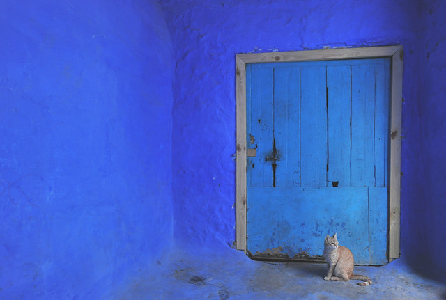 Chefchaouen, Morocco, January 2019 D700 366