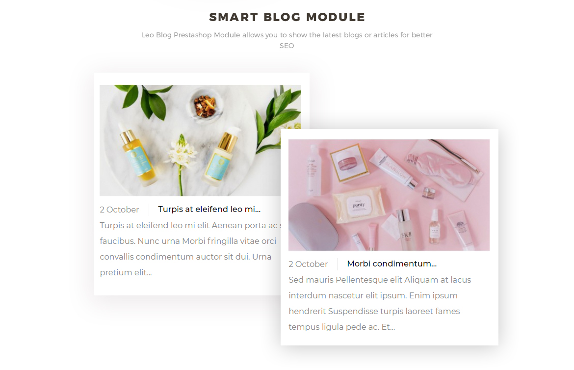 smart blog module - cosmetics and beauty online store