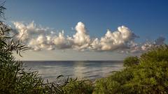 Nubes cumuliformes al amanecer