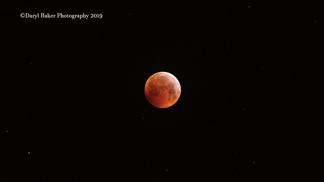 Lunar Eclipse 2019, Nikon D500, Tamron SP 70-300mm f/4-5.6 Di VC USD (A005)