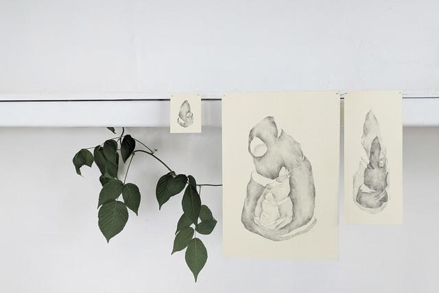 Anna Zoladz 個展「Terra Incognita」を開催します