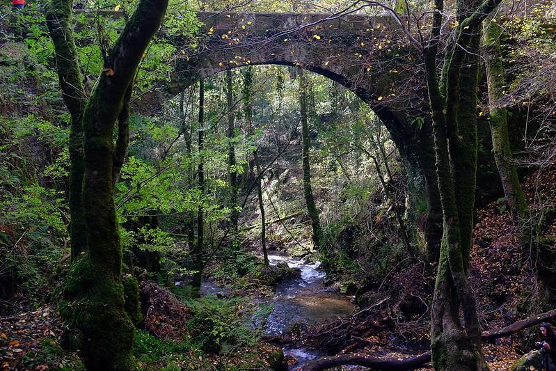 rego Sesín e ponte xunto ao mosteiro de Caaveiro