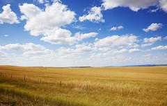 South Dakota rural scene. Original image from Carol M. Highsmith's America, Library of Congress collection. Digitally enhanced by rawpixel.