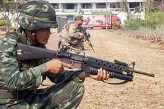 Combined Thai, U.S. C-IED training