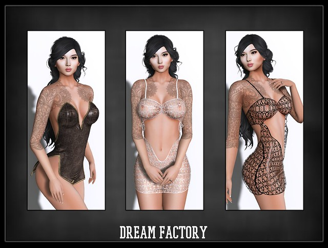 dream factory3