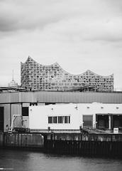 Alternativer Blick auf die Elbphilharmonie 03