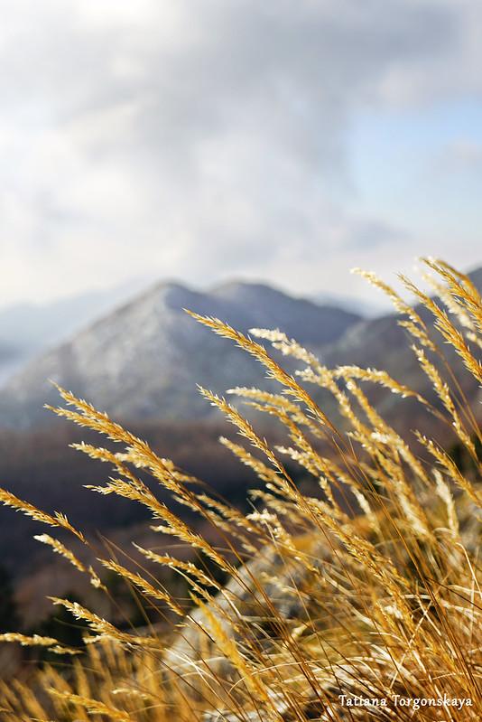 Пейзаж с обочины  горной дороги