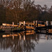 Late sun at Pywell's Lock