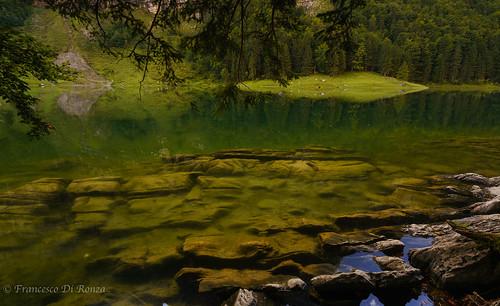 mountainlandscape nature water reflection sony lake imfreien natur sonyfe1635mmf4zaoss bäume trees sonyilce7r2 longtimeexposure see himmel haida langzeitbelichtung lightroomcc spiegelung sky wasser berglandschaft ndfilter seealpsee outdoor weissbad kantonappenzellinnerrhoden schweiz ch