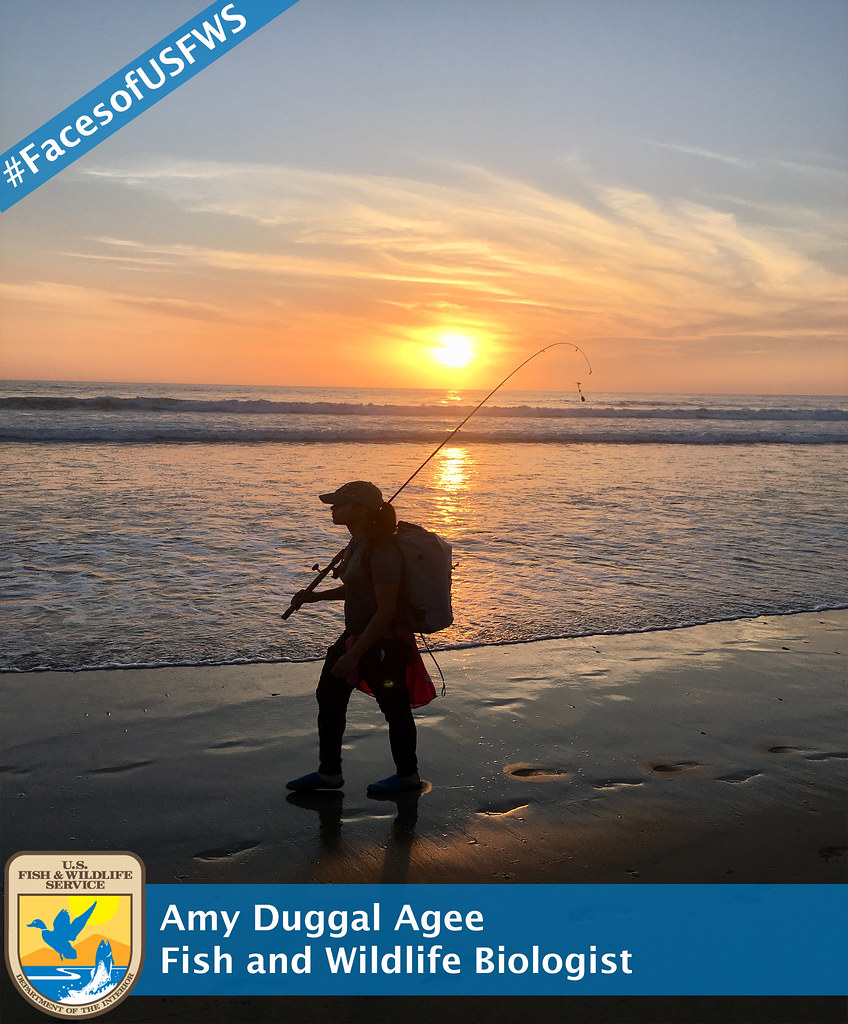 Faces of USFWS: Amy Duggal Agee, Fish and Wildlife Biologist