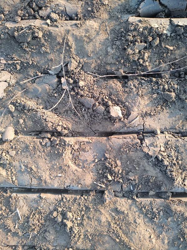 Ground Texture 6