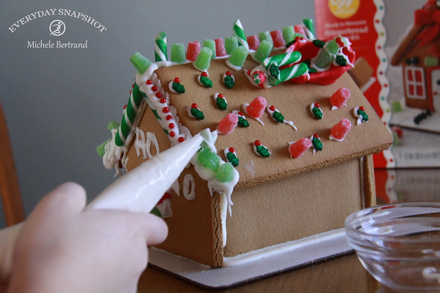 Gingerbread Houses (7)