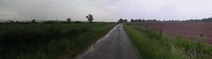 20080515 22976 0905 Jakobus Feld Wald Wiese Zaun_P01