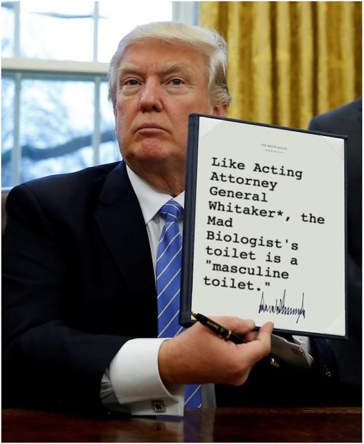 Trump_masculinetoilet
