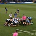 013-20181104_Cardiff Arms Park-Cardiff Blues vs Zebre Rugby Match-2nd half action-scrum in Zebre half of pitch-photo 1 of 3