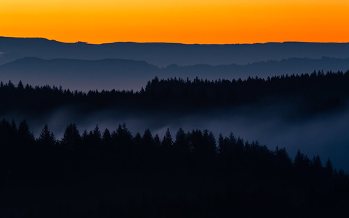 sunrise morning landscape smoke trees nature layers bandon orgeon pacific northwest canoneos5dmarkiii canonef100400mmf4556lisusm longexposure johnwestrock