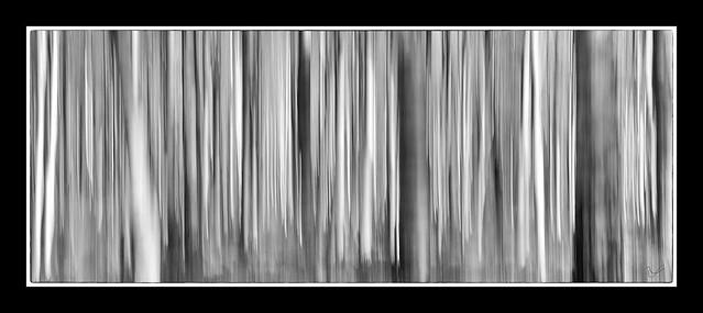 Who will free me?, Fujifilm X-T1, XF18-135mmF3.5-5.6R LM OIS WR