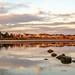 Low tide in the rhine by Maarten Takens
