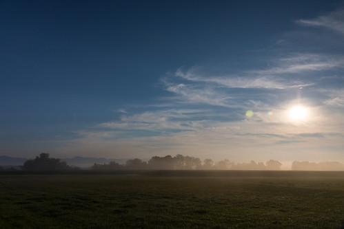 Dawn/Morgen
