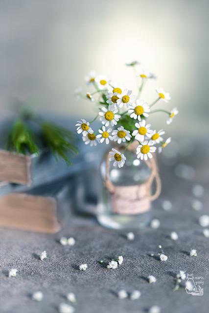 A little flower!