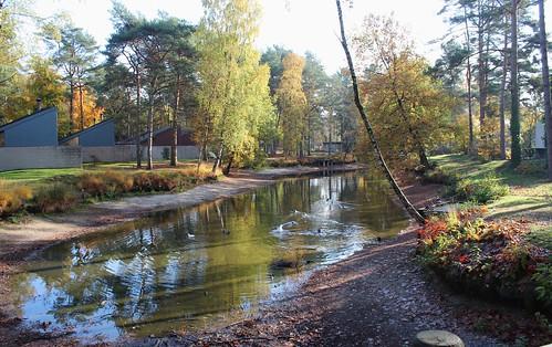 Holidaypark Vennebos - Hapert (Holland)