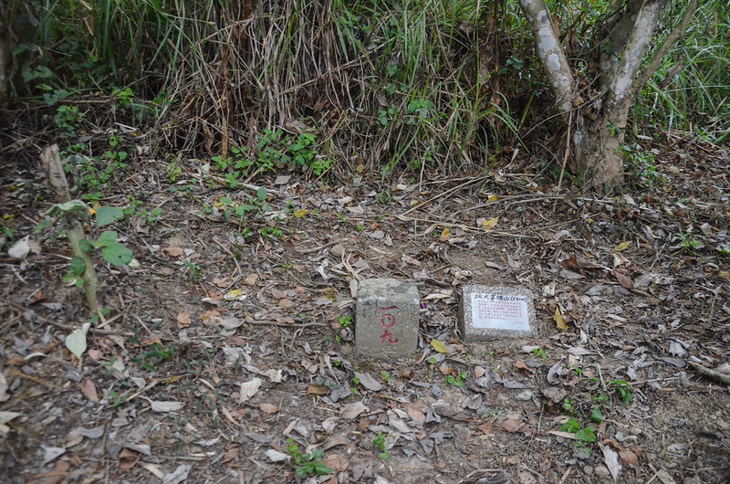 大茅埔山三等三角點(# 109 Elev. 630 m) 1